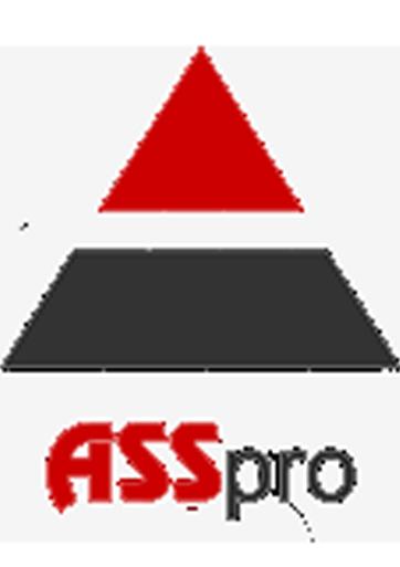 ASSpro AG - Informatik-Projektangebote Schweiz